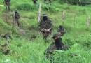 Temor en Antioquia ante amenaza de paro de paramilitares de las AGC