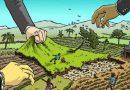 Organizaciones agrarias denuncian que el Gobierno Nacional nuevamente quiere afectar el espíritu del Acuerdo Final frente al agraro