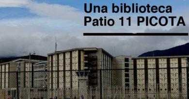 Solidaridad: construcción de la biblioteca del Patio 11