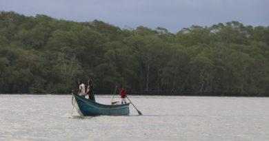 El Pacífico colombiano: la reactivación del conflicto y el abandono de sus comunidades