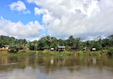 Panamacito